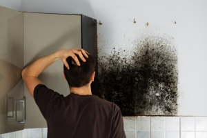 Do you have mold growth in your home or business. It's important to take care of it as soon as possible!