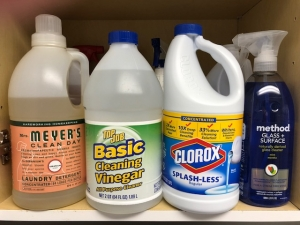Vinegar is better to use than bleach to clean mold.